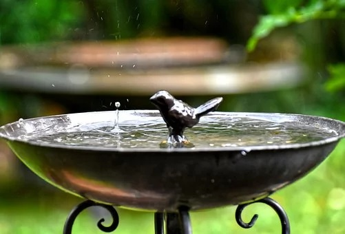 Feng shui bird bath