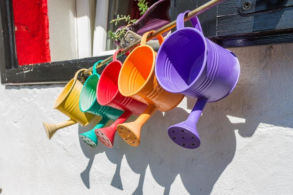 Feng Shui Garden Colors