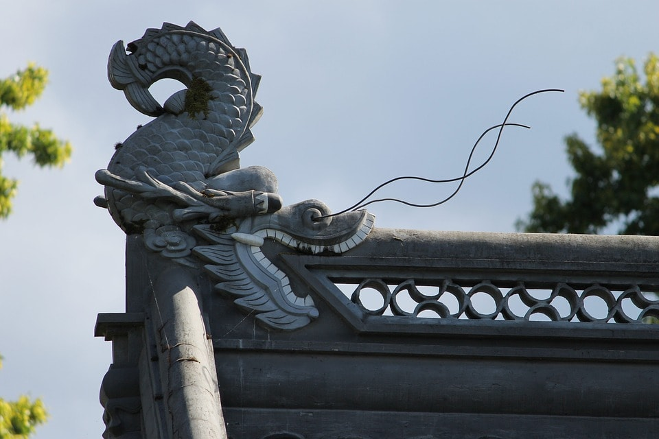Dragon Facing Direction