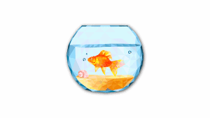 Feng Shui Fish Aquarium Placement In Home – To Maximise Benefits