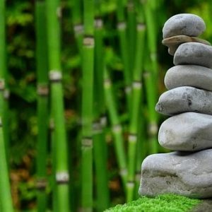 What Is a Zen Garden + How To Create Your Own Zen Garden
