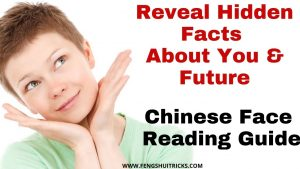 How To Do Chinese Face Reading- Interesting Guide (Reveal Hidden Facts About You And Future)