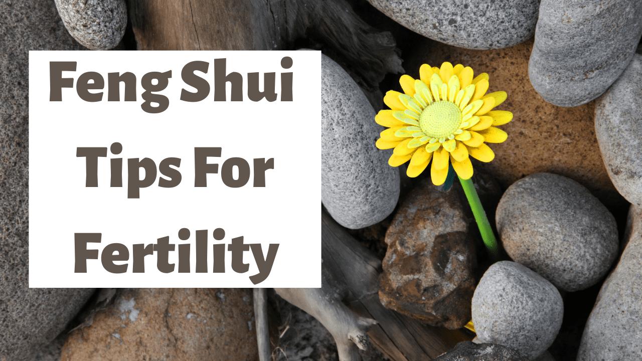 Feng Shui For Fertility