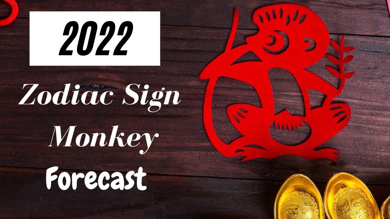 Monkey Chinese Zodiac 2022